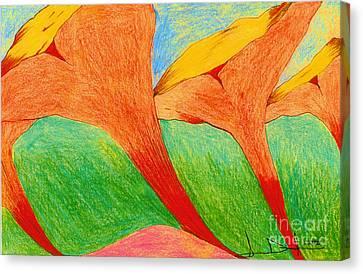 Sea Lillies Closed Canvas Print by George D Gordon III