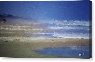 Sea Mist Canvas Print by Anthony Fishburne