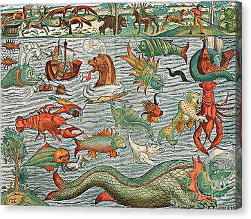 Sea Monsters 1544 Canvas Print by Photo Researchers
