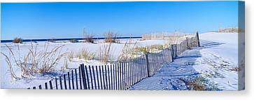 Sea Oats And Fence Along White Sand Canvas Print by Panoramic Images