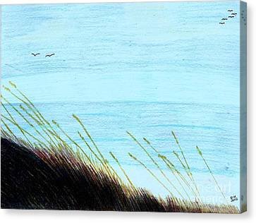 Canvas Print featuring the drawing Sea Oats In The Wind Drawing by D Hackett