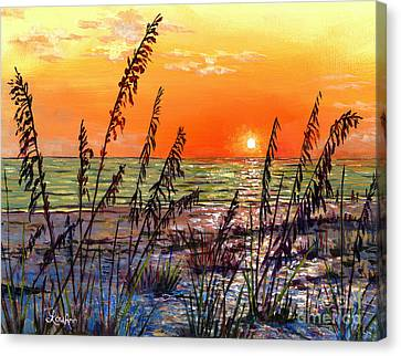 Sea Oats Sunset Canvas Print