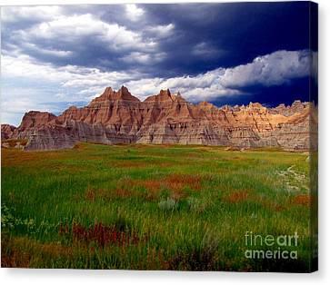Sea Of Color Canvas Print by Laurie Wilcox