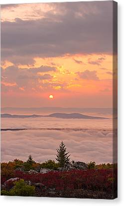 Canvas Print featuring the photograph Sea Of Fog by Bernard Chen
