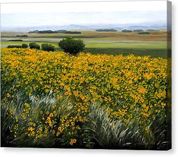 Sea Of Sunflowers Canvas Print