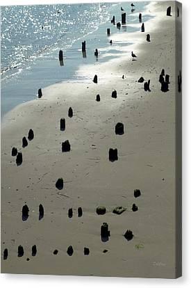 Sea Piles Canvas Print by Deborah  Crew-Johnson