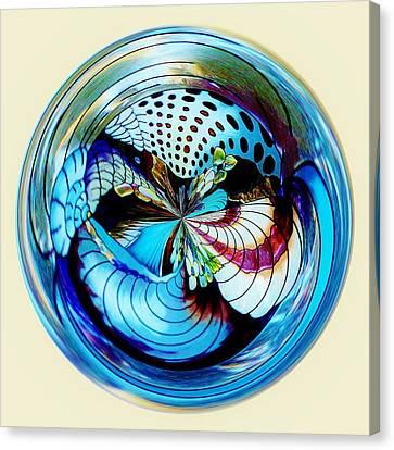 Sea Shell Orb Canvas Print by Paulette Thomas