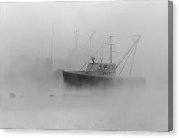 Sea Smoke Jonesport Maine  Canvas Print by Trace Kittrell