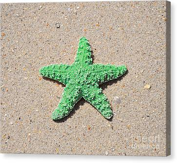 Sea Star - Green Canvas Print by Al Powell Photography USA