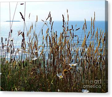 Canvas Print featuring the photograph Sea Through Flora by Gayle Swigart