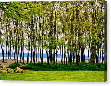 Sea Through The Trees Canvas Print by Juli Ellen