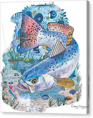 Speckled Trout Canvas Print - Sea Trout Wreck by Carey Chen