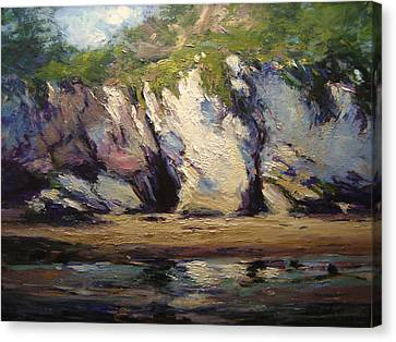 Seacaves At Pismo Beach Canvas Print by R W Goetting