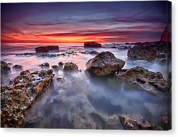 Seaford Rock Pool Canvas Print by Mark Leader