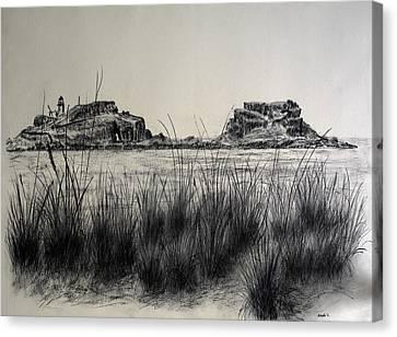 Seagrass And Fidra Canvas Print