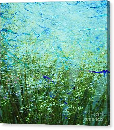 Seagrass Canvas Print by Darla Wood
