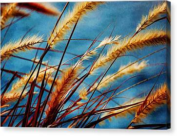 Canvas Print featuring the photograph Seagrass In The Breeze by Pamela Blizzard