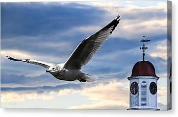 Seagull And Clock Tower Canvas Print