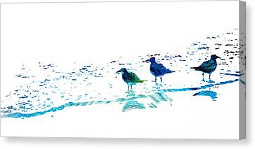 Seagull Art - On The Shore - By Sharon Cummings Canvas Print by Sharon Cummings