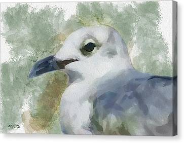Canvas Print featuring the painting Seagull Closeup by Greg Collins
