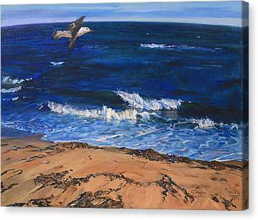 Seagull Flying Along The Surf Canvas Print