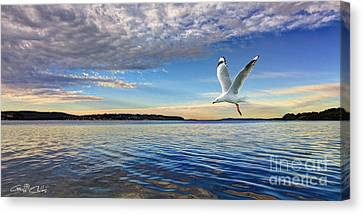 Seagull Marinescape Canvas Print by Geoff Childs