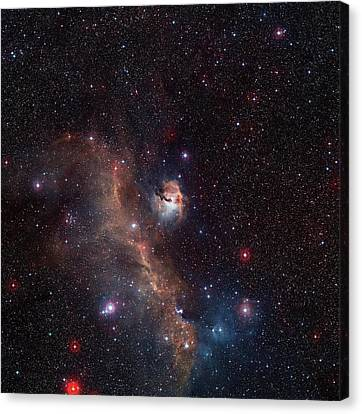 Nebula Canvas Print - Seagull Nebula by Digitized Sky Survey 2/european Southern Observatory