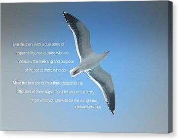 Seagull Soaring W/ Scripture Canvas Print