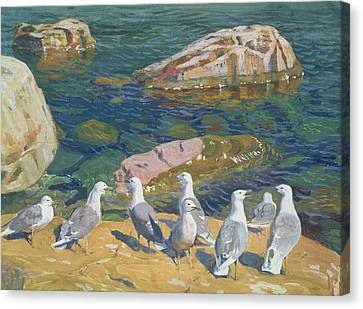 Seagulls Canvas Print by Arkadij Aleksandrovic Rylov