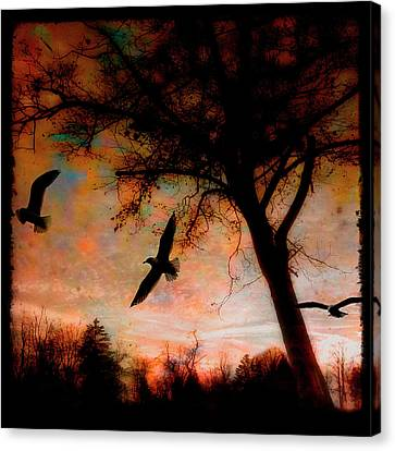 Seagulls At Dusk Canvas Print
