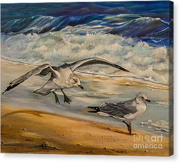 Seagulls On The Beach Canvas Print by Zina Stromberg