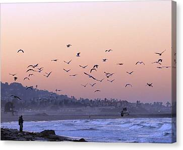 Seagulls Sunrise Canvas Print
