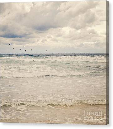 Seagulls Take Flight Over The Sea Canvas Print by Lyn Randle