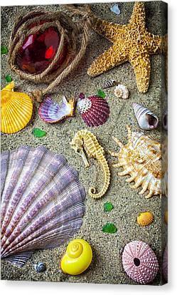 Seahorse With Many Sea Shells Canvas Print by Garry Gay