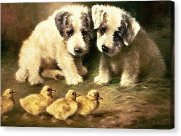 Ducklings Canvas Print - Sealyham Puppies And Ducklings by Lilian Cheviot
