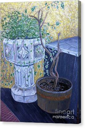 Sean's Planter Canvas Print by Brenda Brown