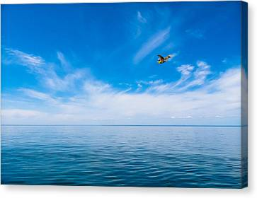 Canvas Print featuring the photograph Seaplane Over Lake Superior   by Lars Lentz