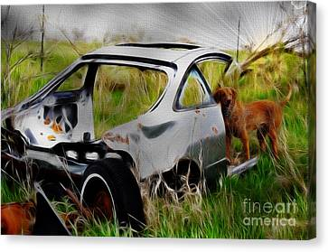 Search And Rescue Canvas Print by Liane Wright