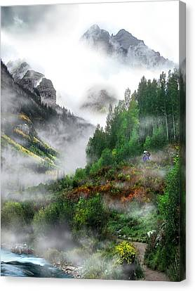 Searching For A Steller's Jay Near Aspen Colorado. Canvas Print by Ric Soulen