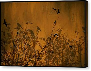 Searching For Spring Canvas Print by Diane Schuster