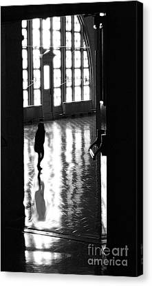 Searching Canvas Print by Raymond Earley