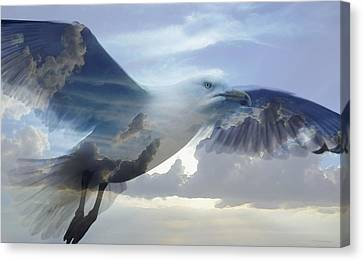 Muted Canvas Print - Searching The Sea - Seagull Art By Sharon Cummings by Sharon Cummings