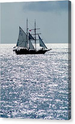 Seascape Canvas Print by Anonymous