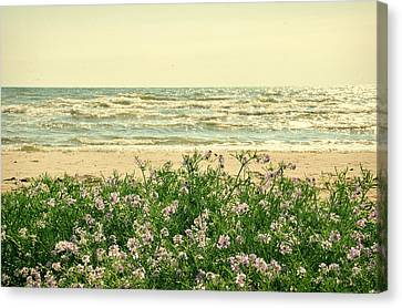 Seascape Canvas Print by Gynt