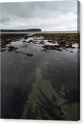 Seascape Canvas Print by Steve Watson