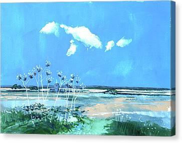 Seascape X Canvas Print by Stuart Roy