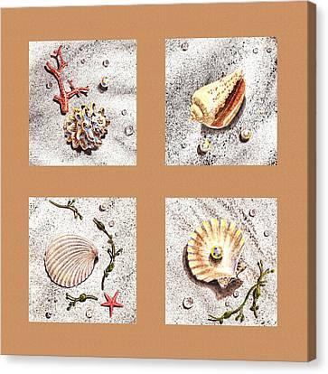 Seashell Collection II Canvas Print by Irina Sztukowski