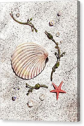 Seashell Sea Star And Pearls On The Beach Canvas Print by Irina Sztukowski