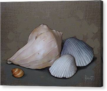 Seashells Canvas Print by Clinton Hobart
