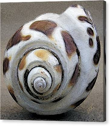 Canvas Print featuring the photograph Seashells Spectacular No 2 by Ben and Raisa Gertsberg